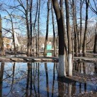 Зеркало апреля :: Albina