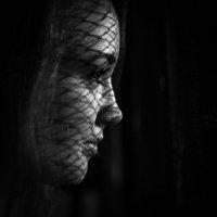 NightNyan` :: Дмитрий Заболотних