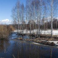 Весенний БУЛЬК...)) :: Владимир Хиль