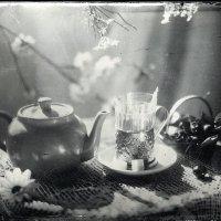 Весеннее чаепитие :: Сергей Гайлит