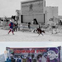 """Праздник зимних видов спорта """"Снежный путь"""" :: Ирина Ю"""