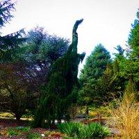Из жизни рептилий. Динозавр изящной походкой прогуливался по Ботаническому саду :: Nina Yudicheva