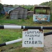 Машины не ставить! :: Ольга  Пусова