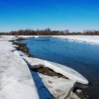 Вешние воды, ледяные берега :: Анатолий Иргл