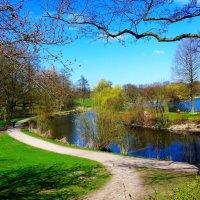Весна в городском парке :: Nina Yudicheva