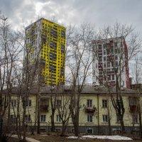Желтый и красный :: Евгений Даренский