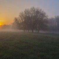 Восхождение теплого солнца :: Сергей Корнев