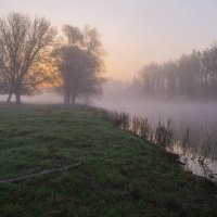 Туманное утро на реке Псел :: Сергей Корнев