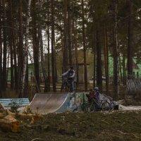 в парке весна :: Геннадий Федоров