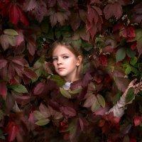 Осенние листья :: Юлия Павлова