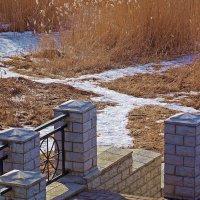Невские берега-18 :: Весна .