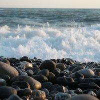 Море :: Елена Волгина