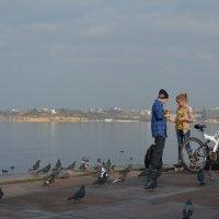 Любовь и голуби) :: Рамиль Ахметов