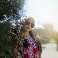 Солнечный туман :: Елена Нор