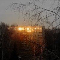 Раннее утро. :: Мила Бовкун