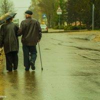 Дождливая весна в Рославле... :: Павел Данилевский