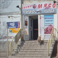 Не солоно хлебавши... :: Нина Корешкова