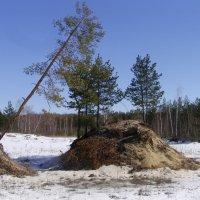 Среди песчаных карьеров :: Виктор Мухин