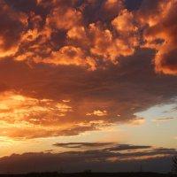 Закатное небо ! :: Alexander Andronik