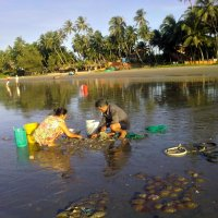Утро у рыбаков во Вьетнаме :: Ирина Бархатова