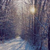первый снег. :: Олег Казаков