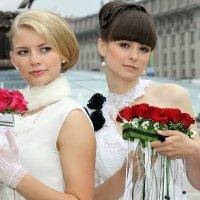 невесты :: виктор омельчук