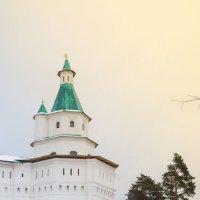 Башня Воскресенского Новоиерусали́мского монасты́ря :: Анна Слободенюк