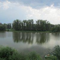 на реке :: tgtyjdrf