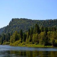 река Бия :: Tatiana Lesnykh Лесных