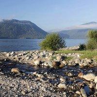 На Телецком озере :: Елена ))