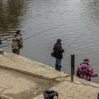 городские рыбаки :: gribushko грибушко Николай
