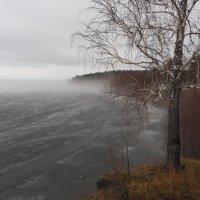 Туманные берега :: Сергей Адигамов