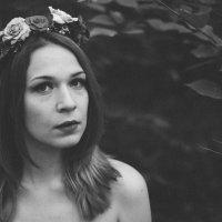 лето :: Наталья Доброскок