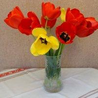 Весна в доме... :: Тамара (st.tamara)