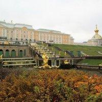 Петергоф в ноябре :: Ольга Алеева