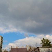 тучи, скоро дождь :: Света Кондрашова