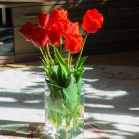 тюльпаны :: Анастасия Садовская
