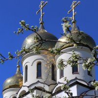 Купола весной :: Alexander Varykhanov
