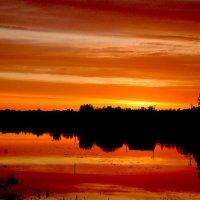 Оранжевый закат :: Даниил Шинкарёв