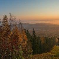 Осенняя палитра :: vladimir Bormotov