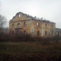 Руины барского дома. :: Tarka