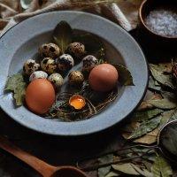 Eggs :: Katie Voskresenskaia