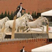 Прыжок :: Nina Grishina