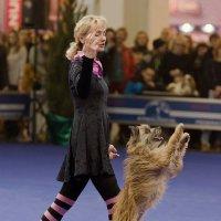 Прыг-скок к победе! :: Nina Grishina