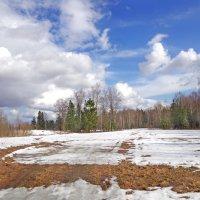 Еще в полях белеет снег :: Валерий Талашов