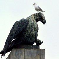 Две птички... :: Сергей