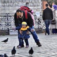 Любовь и голуби :: Юлия Лихачева