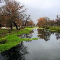 Осень в Баташах :: Инна Щелокова