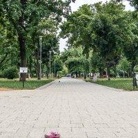 Фотографии с диалогом сюжетно-композиционного центра и пустоты :: Константин Вергун