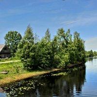 В деревеньке :: Наталья Маркелова